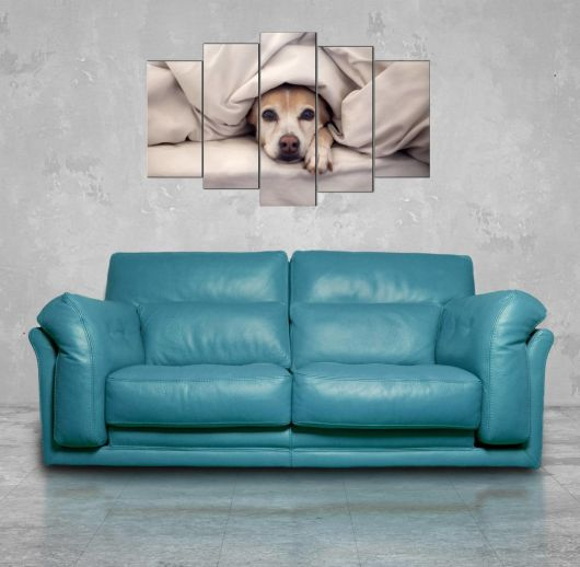 Sleeping Dog 5-Piece Mdf Painting - Thumbnail