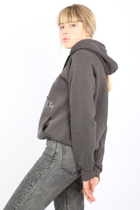 Серая женская толстовка с капюшоном и внутренней флисовой подкладкой Paris France с аппликацией